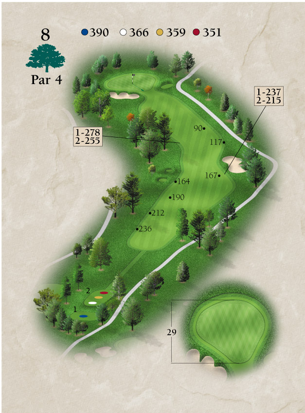 Layout for Hole Number 8